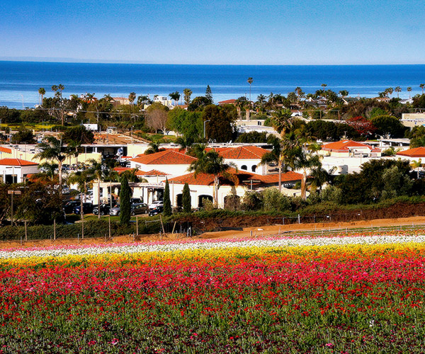 Carlsbad CA Community Information by HomeSwing Real Estate